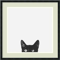 You'll love the Curiosity Framed Photographic Print at Wayfair - Great Deals on all Décor products with Free Shipping on most stuff, even the big stuff.