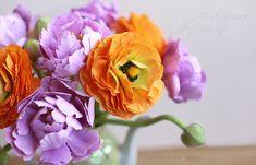ранункулюсы и пионовидые тюльпаны. Больше цветов на сайте ЦВЕТЫ-ФОАМИРАН.РФ