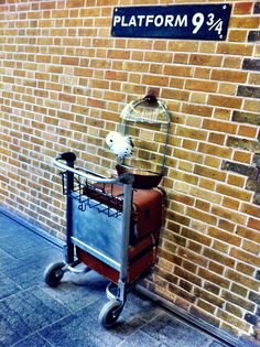 Definitely going here when we go to London :-) Rob loves Harry Potter