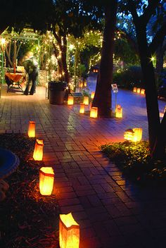 Love the idea of luminaries and the lights around the trees