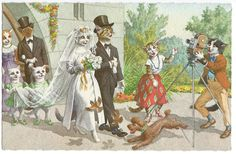 Mainzer Cats Wedding Party Vintage Postcard