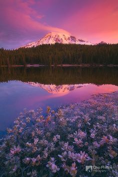 Mt. Rainier - so much beauty outside, concealing the monster within.  I have such a fascination with volcanoes such as these...