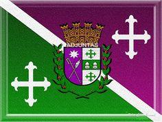 bandera y escudo de adjuntas (mi vercion)7/feb/2010[por Robert caban durand]
