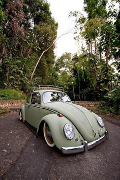 VW Bug-Yes I would!!!
