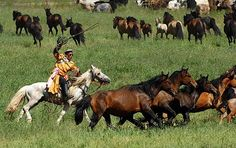 Doğu Türkistan/Shihezi[Seyhenze] Bölgesi-                                            Eastern Turkistan shihezi[Sheyhenze] Region-                                                        دوغو تورکیستان شیهنزه بولگه سی-              Shihezi