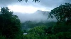 MUSICA INSTRUMENTAL AMAZONICA II (SELVA PERUANA, NUEVO NUEVO!!.) - YouTube