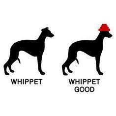 #Devo  Whip it, whip it good!