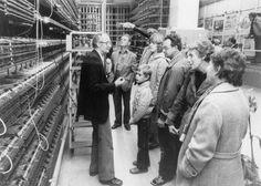 open dag ptt telefonie tweebaksmarkt 1981 TRESOAR - Onderzoeken