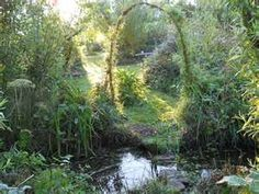 Permaculture Blog/Dawn in the Bog Garden « A Life in the Country