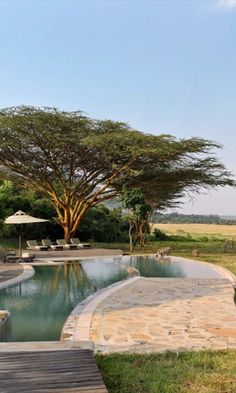 The 26 Best Safari Lodges and Camps in Africa