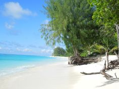 10 hotels on private islands-Denis Private Island Seychelles