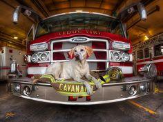 dansun photos, Paramedic, Firefighter, Artist, Traveller