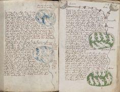 The Voynich Manuscript – Alien Contact in the Medieval Times? Voynich Manuscript, Medieval Manuscript, Illuminated Manuscript, Aleister Crowley, Society Of Jesus, Scientific Drawing, Masonic Symbols, Medieval Times, Old Books