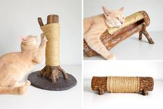 New Faux Wood Cat Scratchers from Saysculptures