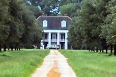 A cotton field christmas cotton plantations mississippi for Civil war plantation homes for sale