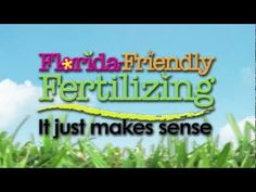 When should you apply fertilizer if it is needed?
