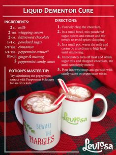 Liquid Dementor Cure: a rich hot chocolate cure for the cold that can be made boozy or not. (we recommend the boozy version) Harry Potter Snacks, Harry Potter Cocktails, Harry Potter Diy, Harry Potter Recipes, Hogwarts Christmas, Harry Potter Christmas, Harry Potter Marathon, Alcohol Drink Recipes, Food Themes