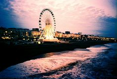 I want to go here and get on that Ferris wheel
