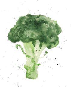 watercolor pencil drawings broccoli - Google Search