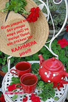 White Cottage, Cottage Style, Café Chocolate, Red Geraniums, Shades Of Red, Tea Set, Cup And Saucer, Red Green, Tea Time