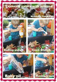 Momma's Fun World: Exploring Science sensory bin with nature