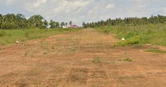 The abandoned village, airstrip at Wakenaam