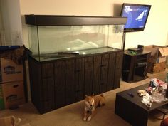 Fish tank stand for a friends 125 gallon tank. Hard to see but there are three (hidden) doors on the front for storage.