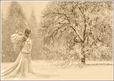 Christmas Snow Scenes