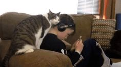 Pay attention to me!