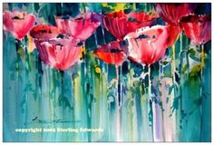 Poppies and More Poppies by Sterling Edwards