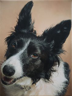 I painted a redditors Border Collie (oil on canvas) I hope you like it.