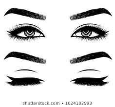 Hand-drawn woman's sexy makeup look with perfectly perfectly shaped eyebrows and extra full lashes. Idea for business visit card, typography vector. Perfect salon look How To Draw Eyelashes, Longer Eyelashes, Perfect Eyebrow Shape, Perfect Eyebrows, Sexy Makeup, Makeup Looks, Eyebrows Sketch, Cute Bun Hairstyles, Perfect Red Lips