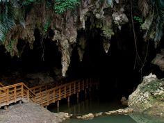 Explore the beautiful island of Okinawa.
