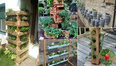 Diy ideas to build a vertical garden for small space Herb Garden Pallet, Gutter Garden, Pallets Garden, Vegetable Garden, Pallet Gardening, Olive Garden, Bottle Garden, Small Space Gardening, Garden Trellis