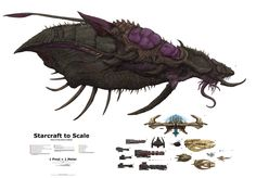 Starcraft Leviathan, to Scale