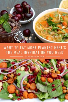 Want to Eat More Plants? Here's the Meal Inspiration You Need Healthy Food Habits, Healthy Vegetable Recipes, Vegetarian Recipes, Healthy Eating, Delicious Recipes, Plant Based Diet, Plant Based Recipes, Clean Eating Recipes, Lunch Recipes