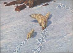 Polar bear family - Richard Friese
