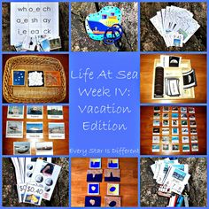 Every Star Is Different: Life At Sea Week IV: Vacation Edition