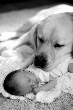 Love has no boundaries! #quote #motivationalPic #nicePic