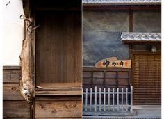 OPENharvest | Kelly Ishikawa