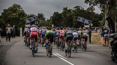 Tasmania's Will Clarke won both the King of the Mountain and spring challenges at the 2015 Australian Road National cycling championships. (Image: ABC Local/Margaret Burin)