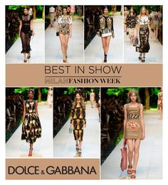 """""""Mfw: Dolce & Gabbana S/S 2017"""" by serepunky ❤ liked on Polyvore featuring Dolce&Gabbana, dolcegabbana, mfw, bestinshow and favelooks"""