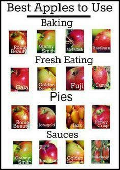 "Another Pinner wrote: ""An easy guide to the best apples to use in cooking & baking. I disagree with the Honeycrisp only under Pies though - it is the BEST one for fresh eating Do It Yourself Food, Think Food, Lunch Snacks, Lunches, Granny Smith, Baked Apples, Food Facts, Fruit Facts, Baking Tips"