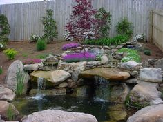 Model home Pond with our landscape