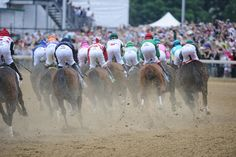 Oaks Day ~ Breast Cancer Awareness Kentucky Derby Time, My Old Kentucky Home, Oaks Day, Run For The Roses, Churchill Downs, Thoroughbred Horse, Horse Ranch, Derby Party, Horse Racing