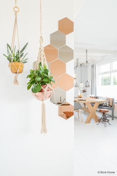 Great idea from Urban Jungle Bloggers to mix and match hanging plants with hexagon accents | DunnDIY.com | #DIY #DunnDIY #inspiration