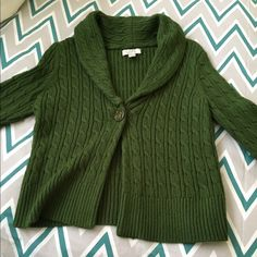 Perfect fall Green Sweater great condition Ann Taylor loft perfect green fall sweater.   Great w dress pants and skirts as well as jeans.  Gorgeous green color.  It's not a flimsy /thin sweater.  Great quality on this one.  You will love the softness and thickness. Ann Taylor Sweaters Cardigans