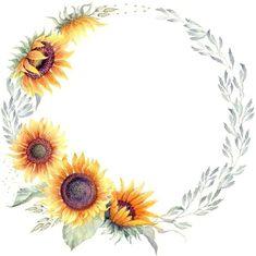 Solroskrans Sunflower Drawing, Watercolor Sunflower, Flower Wallpaper, Wallpaper Backgrounds, One Stroke Painting, Autumn Painting, Art Clipart, Watercolor Design, Watercolor Background