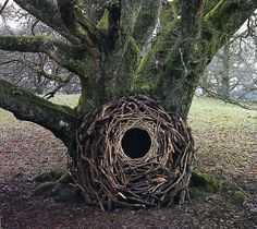 Various works by Andy Goldsworthy. All of his work is done without paint, glue, or any other man-made materials.