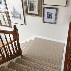 Image Result For Patterned Carpet Stairs